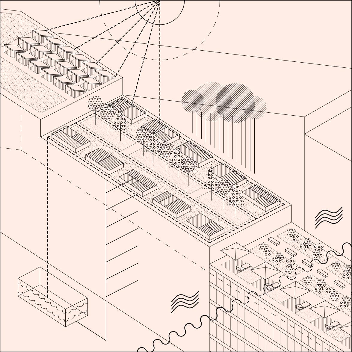 monte pedral projecto urban plan miguel gomes arquitectura
